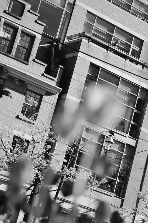 architectural snapshot